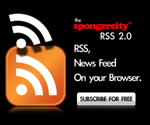 spongercity rss feed